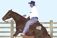 Bulletin: Horses and Prairie