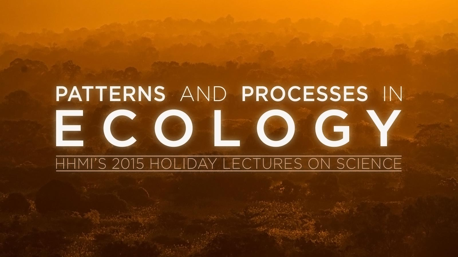 holiday lectures banner image