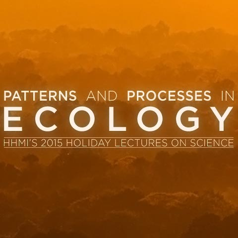 holiday lectures thumbnail image