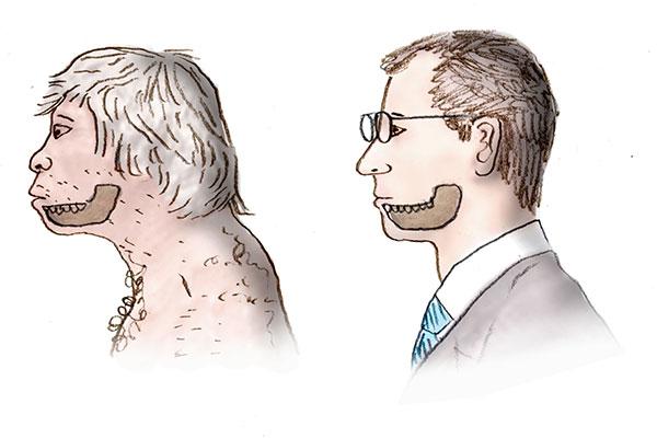 Bulletin: Jawbone Reveals Neanderthal Origins
