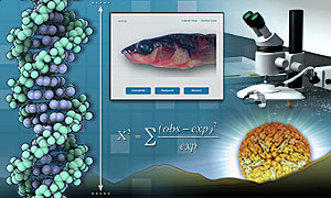 Stickleback Evoultion Lab