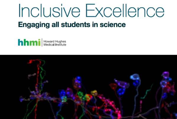 Diversity essay topics medical school