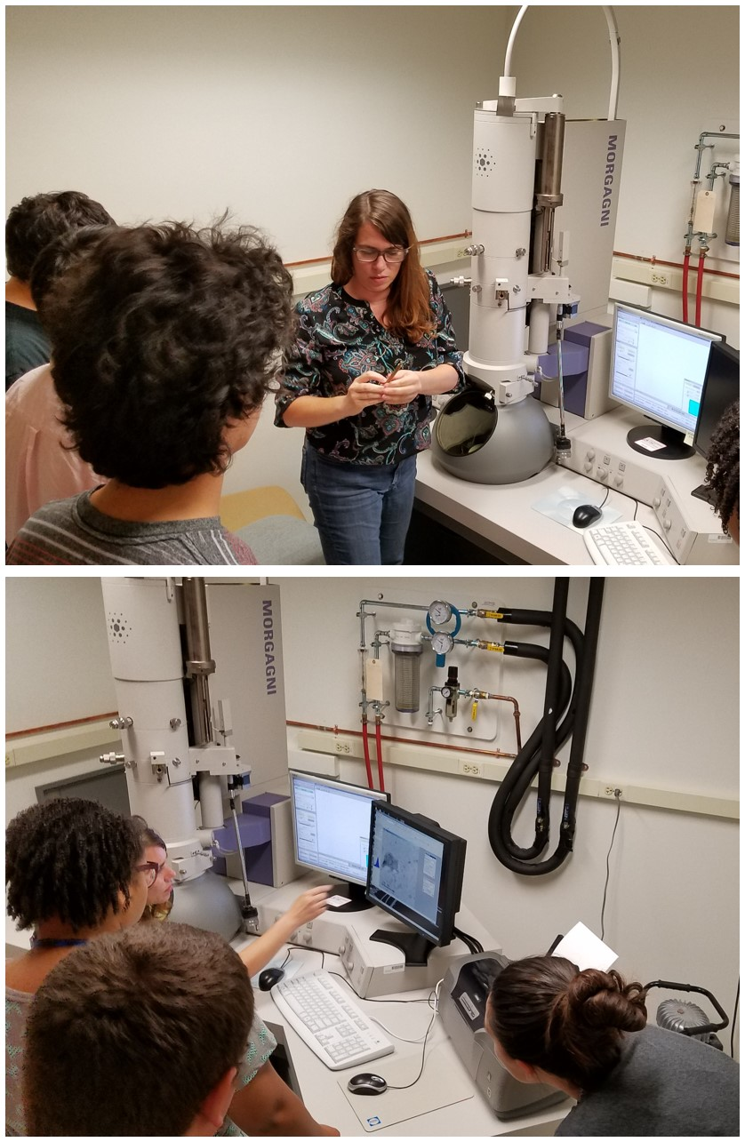 Tagide deCarvalho, research assistant professor and director of the Keith R. Porter Imaging Facility at UMBC, helps students search for phage on a transmission electron microscope (TEM)