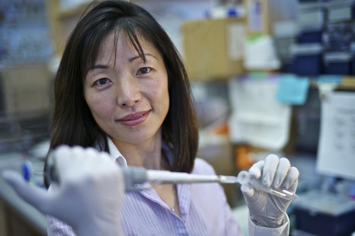 HHMI Investigator Akiko Iwasaki