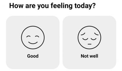 Screenshot of How We Feel App