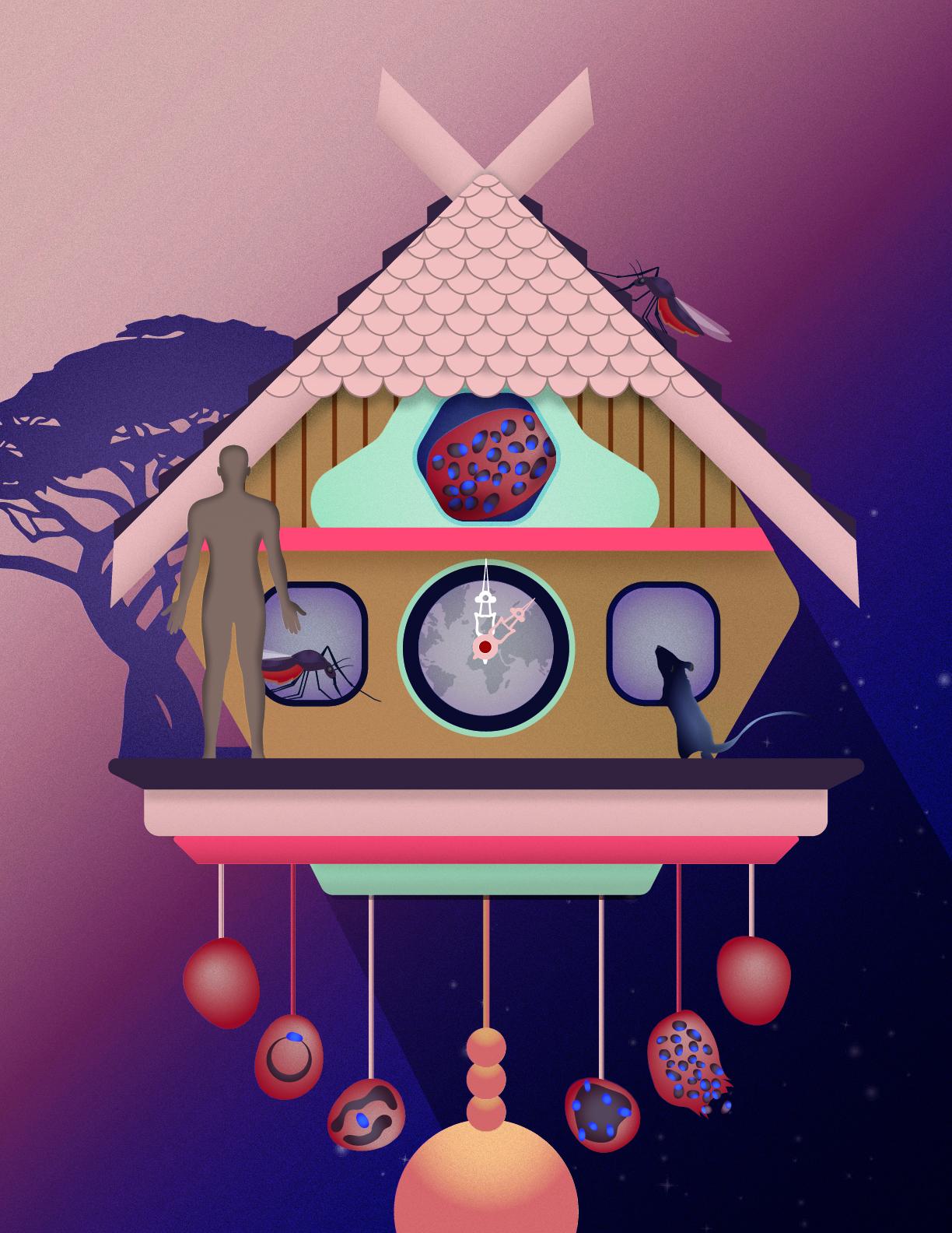 Malaria clock