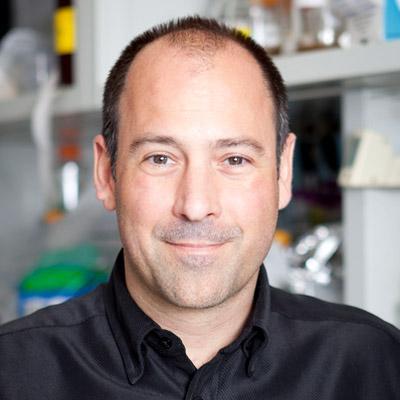 Christopher D  Lima, PhD | HHMI org