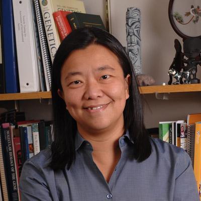 vivian g cheung md hhmi org