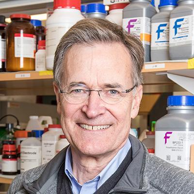 Bruce D  Walker, MD | HHMI org