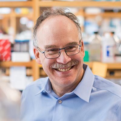 Daniel A  Haber, MD, PhD | HHMI org