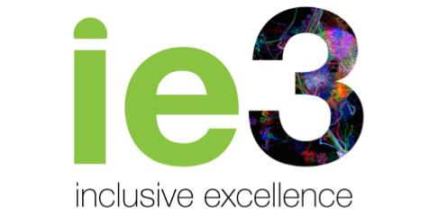 Inclusive Excellence 3