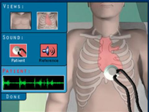 Anatomy virtual lab