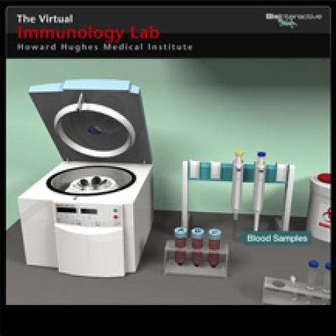 Immunology Virtual Lab