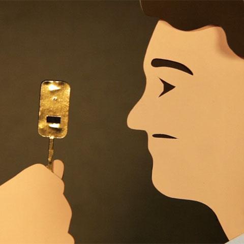 What van Leeuwenhoek Saw