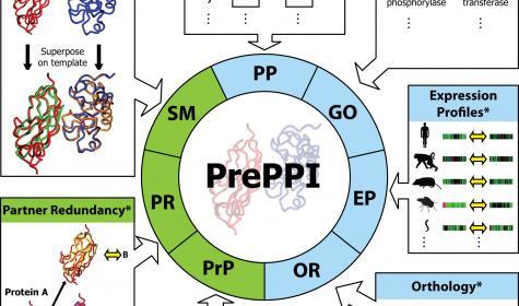 Overview of PrePPI