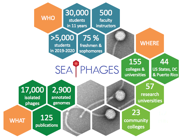 Data related to the SEA-PHAGES program, including the number of students, faculty members, institutions, publications, bacteriophages, and annotated genomes.