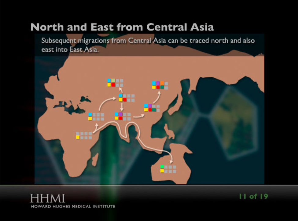 """This image shows a slide from the """"Using DNA to Trace Human Migration"""" Click & Learn showing human migration patterns from central Asia."""